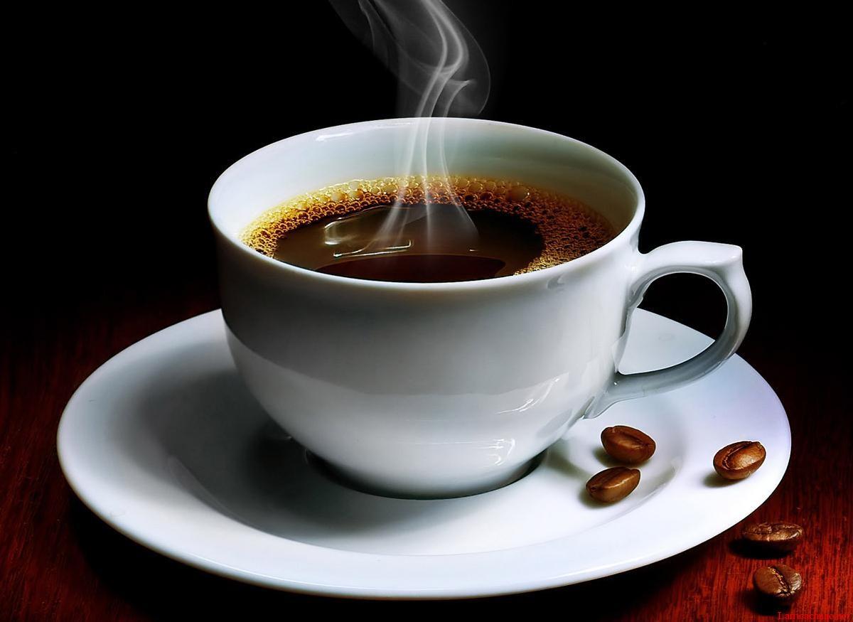 Những gì bạn muốn biết về Cà phê