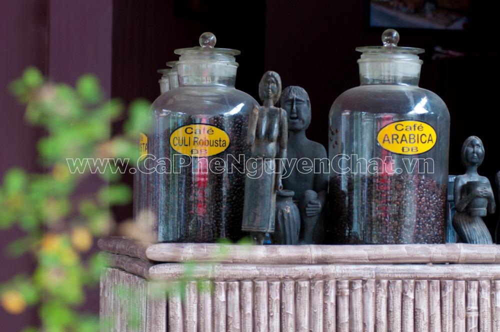 Phân phối cà phê sạch Hà Nội ngon số lượng lớn