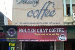 Musty Coffe - Cà phê nguyên chất Bắc Cạn