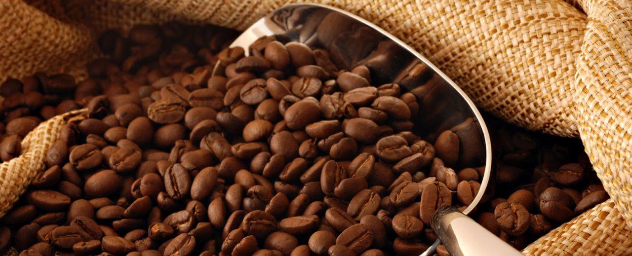 ban-da-biet-cach-nhan-biet-cafe-nguyen-chat-khi-pha-cafe-chua-1