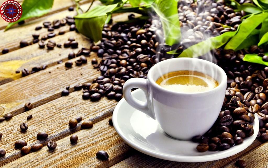 Cà phê xuất hiện ở khắp nơi ở Sài Gòn. Từ quán cóc, quán nước, cửa hàng sang trọng,..Duy có một thứ khó tìm, đó là nơi mang đến một ly cafe sạch Sài Gòn đúng điệu. Cùng theo chân Nguyen Chat Coffee tìm hiểu về nơi giúp bạn thưởng thức được ly cafe sạch đúng nghĩa nha.