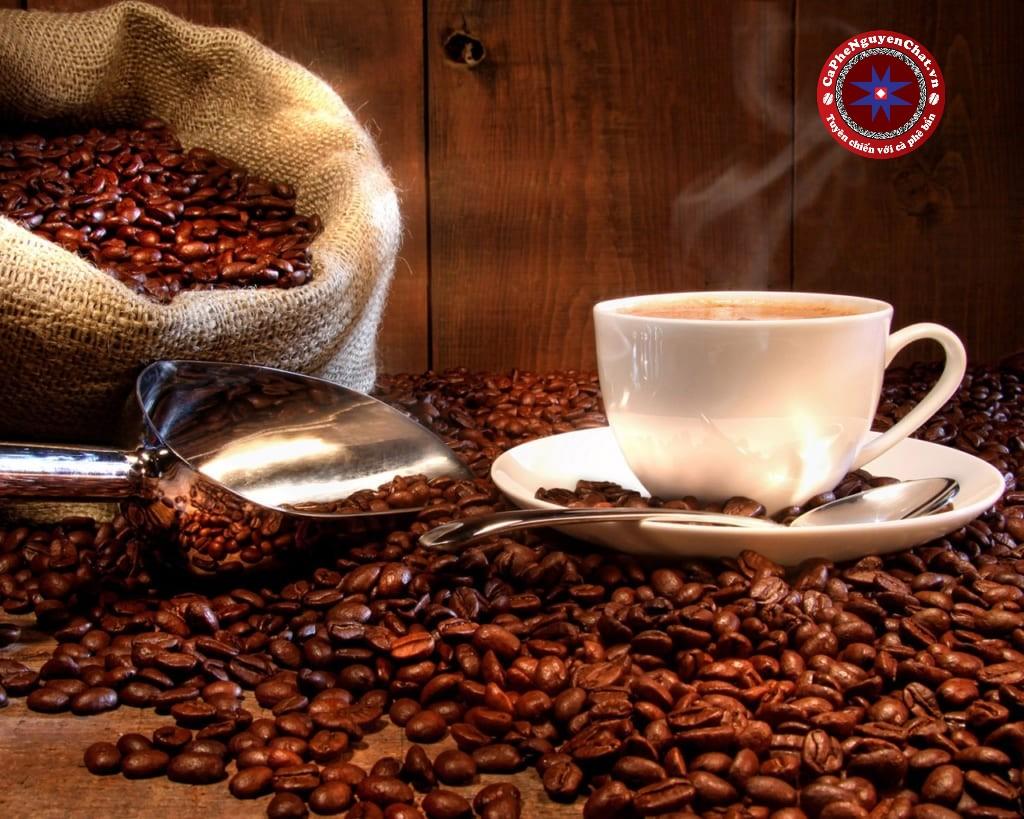 Âm nhạc là cầu nối gắn kết tâm hồn mọi người lại với nhau. Việc lựa chọn âm nhạc trong khởi nghiệp kinh doanh cà phê nguyên chất ra sao.Cùng Nguyên Chất tìm hiểu