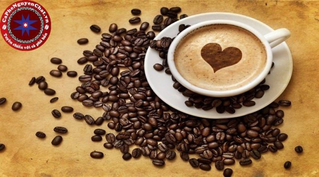 Thưởng thức một ly cà phê nóng vào buổi sáng sẽ giúp tinh thần tỉnh táo hơn. Để có được 1 ly cà phê ngon thì cần có công thức chế biến cà phê đặc biệt. Hãy cùng Nguyên Chất Coffee tìm hiểu điều đặc biệt này nhé.