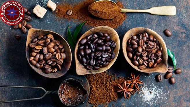 Trước khi chế biến cà phê thì một khâu vô cùng quan trọng đó là lựa chọn nguyên liệu cà phê đầu vào một cách kĩ lưỡng nhất.